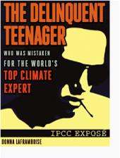 http://nofrakkingconsensus.files.wordpress.com/2011/10/bad_teen170.jpg