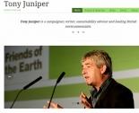 juniper_tony