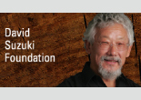 suzuki_foundation_small