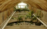 TripodGirl_kew_greenhouse3_1280-8